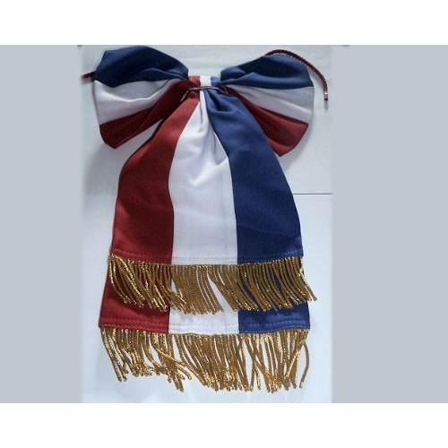 Cravate tricolore