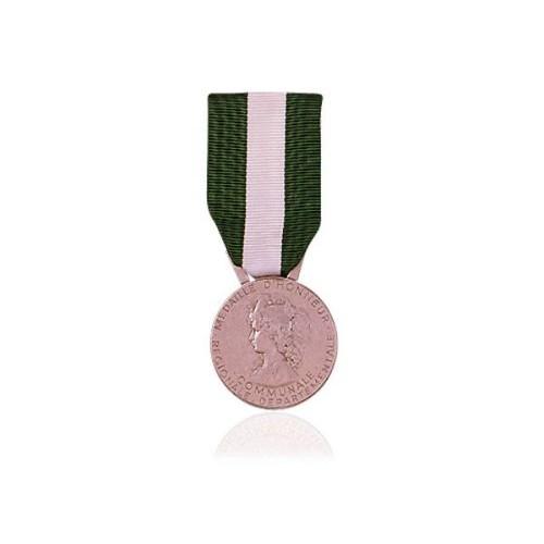 Médaille départementale et communale | Argent